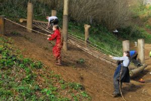 Read more about the article Woodland Playzone